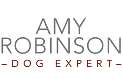 Amy Robinson Dog Expert